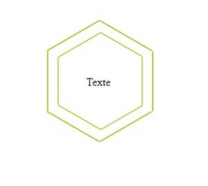 hexagon with double borders